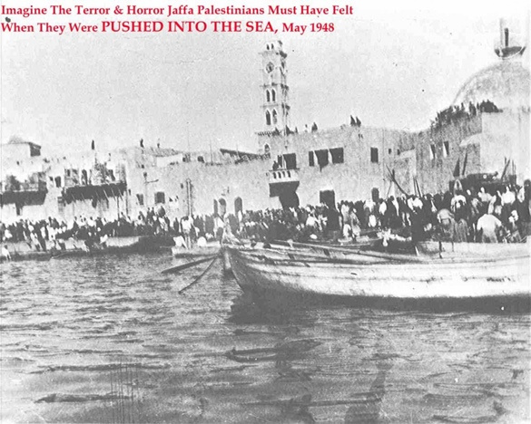 Palestinians Pushed into Sea